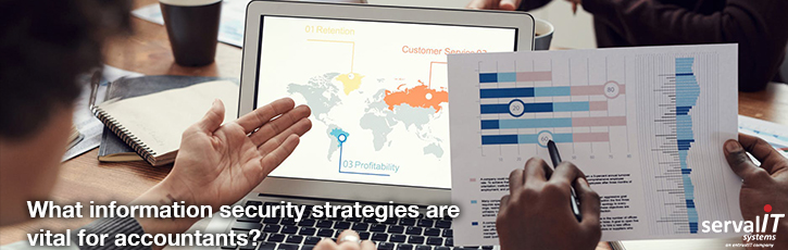 What information security strategies are vital for accountants?